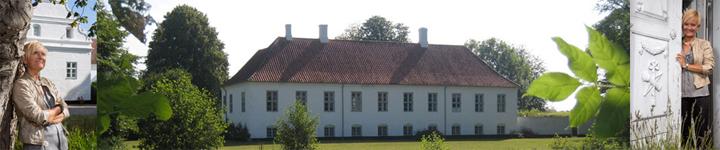 MIndfulness og yoga retreat med Helen Eriksen på Sandagergaard, se wiseonlife.dk