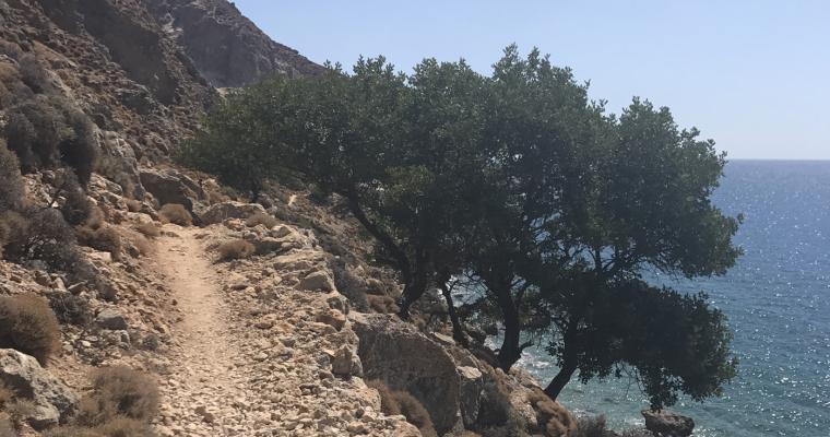 Livsvandring på Kreta
