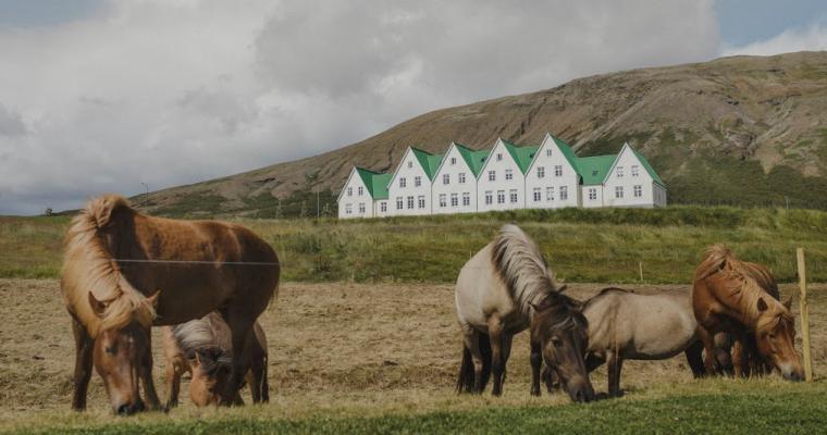 Stress helt af og lær indre ro med Mindfulnesskursus i Island, se Levlykkeligt.dk