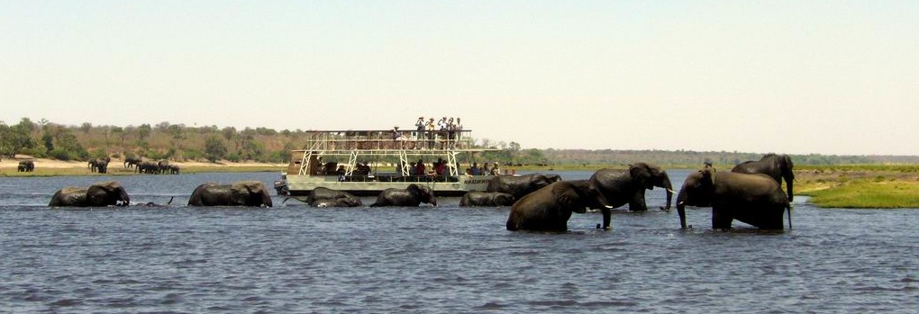 Safari til vands i Chobe National Park1